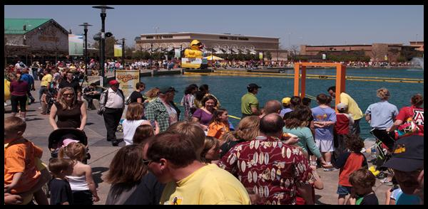 The 6th Annual YESS Duck Derby