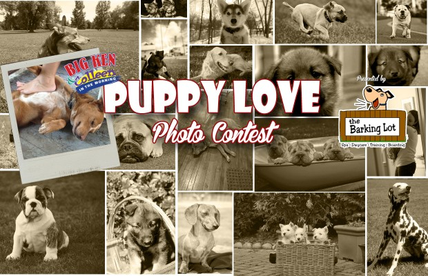 Puppy Love Contest Winner